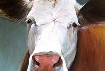 Mooie koe / Dieren