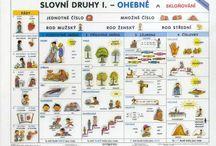 slovak learn