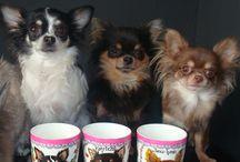 chihuahua, Bulldog,Sharpei  and many more! hand painted customized dog portraits / customized porcelain Mugs