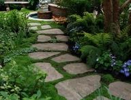 House n Yard ideas / by Tracey Dysert