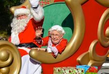 Christmas in Safety Harbor / Holiday happenings in the Harbor!