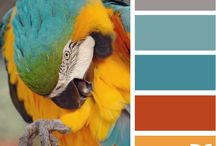 Kleurenpalet / how to make a matching color palet