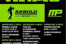 Arnold workouts