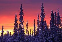 Beautiful Lapland