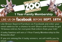 #Knoxville #Sweepstake #Zoo #KnoxvilleZoo
