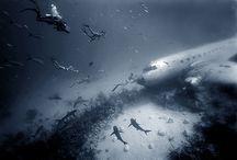 Plane Wreck Underwater