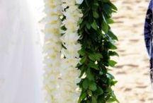 Bride's Lei