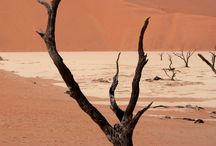 Sossusvlei and Dead Vlei / Surreal and photogenic...Dead Vlei in the heart of the Namib Desert, Namibia