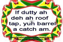 Guyanese Proverb