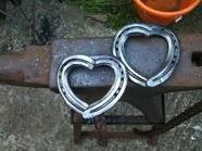 horse shoes, barbed wire, metal / by Fina Shively-Northcutt