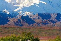 Alaska and Moose,etc. / by Rita Rotondo