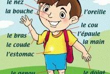 French body