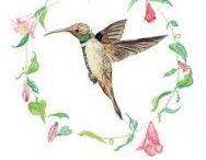 ilustraciones fauna chilena