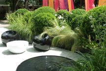 Brunnen / Garten
