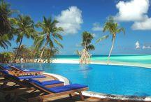 Paradise...FOUND