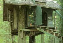 Tarzan needs tree house.... / by Mama Conn