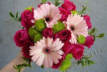 Gerbera arrangments