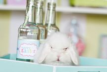 PARTY THEME - Easter