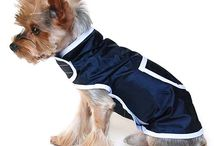 2014-es Yorktrend Kutyamellény kollekció / Kutyamellények nagy választékban. Lányos és fiús, bélelt és nem bélelt, csinos és sportos darabokat egyaránt találsz kollekciónkban!