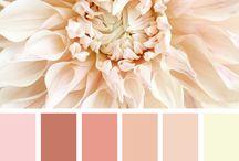 INSPIRED :: Color Palettes / white color palettes | green color palettes | blue color palettes | red color palettes | bold color palettes | neutral color palettes | warm color palettes