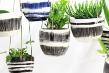 INDOORS   The Planthunter Directory / Indoor spaces we love!