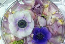 CCVEST messe / Vi fra Finn Schjølls Blomster har vært og dekorert på en messe på CCVEST.
