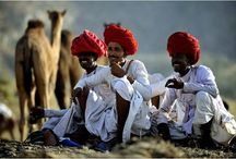 Rajasthan Holiday Package / Rajasthan is The perfect for  Holiday  destination