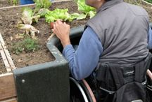 Gardening / Adaptive gardening for your residents.