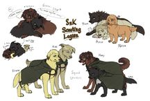 Attack on titan Dogs