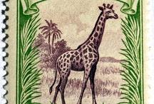 Companhia de Mocamique Stamps