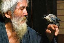 Mysterious graybeard