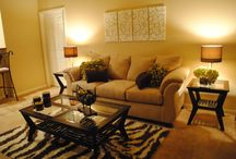 Apartment Living Rooms Ideas