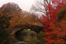 Φθινόπωρο / Φθινοπωρινές φωτογραφίες
