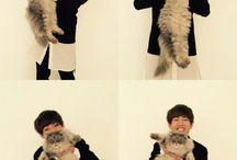 Taehyung x pets / BTS V x Animals