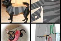 Doggies Jersey's to make