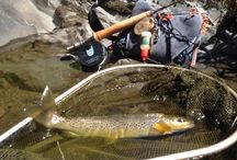 Fly Fishing / Fish pics, Flies and all things fly fishing