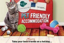 Perth Dog Friendly Accommodation