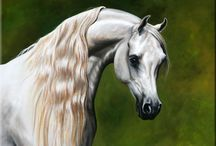 Amazing Artwork of the horses of Pearsons View, Australia. / Dedicated to the talented artists who have captured the beauty an the souls of the horses we have bred, owned and loved.