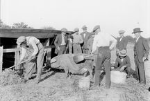 Centennial | 100 years of Cooperative Extension