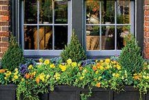 Διακόσμηση κήπου-αυλής