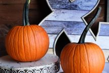 Fall Ornamentals / Grow your own fall decorations! Easy to grow from seed- these garden crops will be the highlight of your garden and your fall decor!