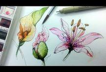 Art - Pen & Ink