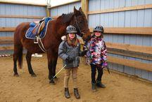 Horseback Riding Camps