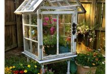 Cold Frames and Greenhouses
