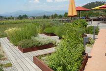 giardini/gardens / scorci di soluzioni progettuali e sistemazioni a verde di esterni