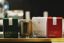 Festive Season with ECOYA