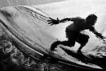 Marine life / by Vladas Vintsyunas
