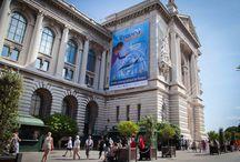 """Musée Océanographique de Monaco / L'expo-sensation """"Requins"""" au Musée océanographique de Monaco  L'Institut océanographique de Monaco a souhaité inviter le public à dépasser des stéréotypes bien ancrés, pour partir à la rencontre de ces super-prédateurs. La signalétique a été confiée aux professionnels d'Exhibit Group: Exhibit Monaco"""