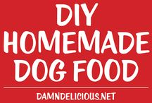 Food For Dogs / Recipes especially designed for your pooch to enjoy.