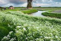 Netherlands - My love..